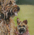 Chewy and Junior dog portrait in pastels 16x20
